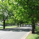 Memorial_Drive,_Riverside,_Cambridge_MA - John Phelan