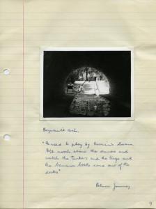 Brynmill Arch, Swansea